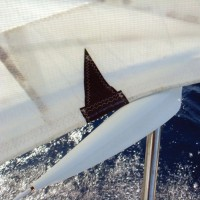 Sail Protector from Stanchions Lifelines