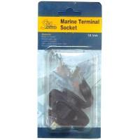 Marine Terminal 12v Socket